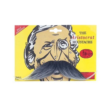 Grey Aristocrat Moustache