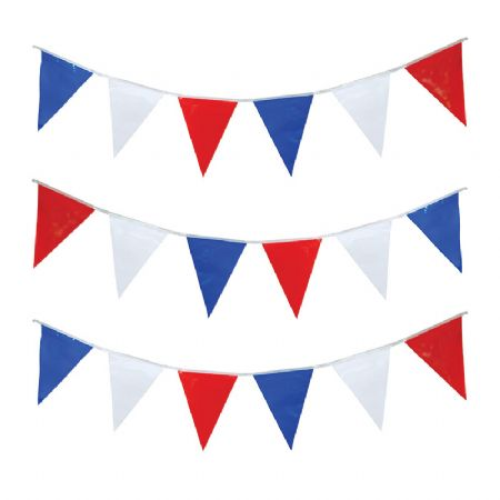 Red, White And Blue Bunting (Pg007)