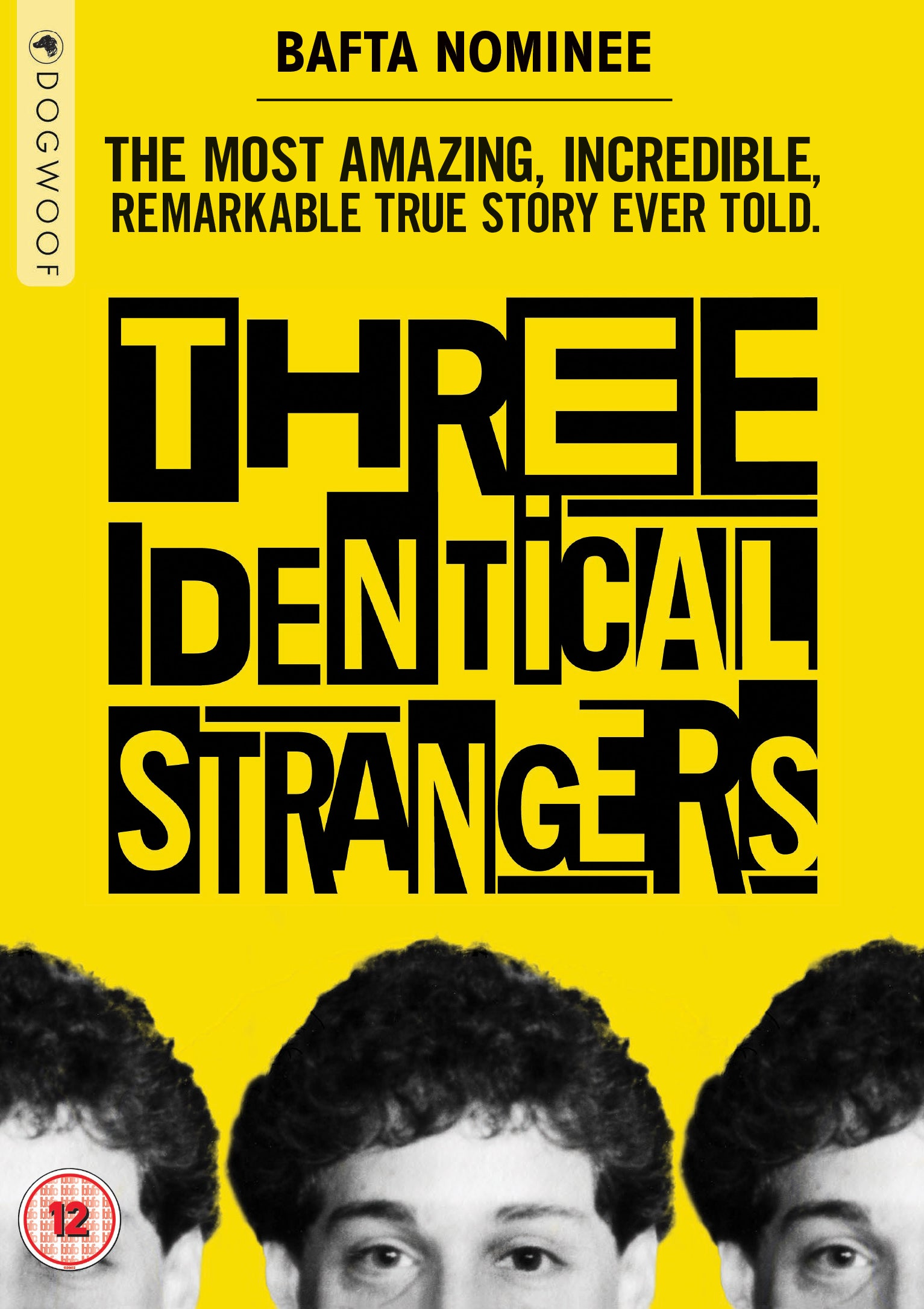 Image result for three identical strangers poster""