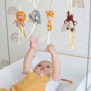 Ruby Melon Collapsible Mobile Toy Frame