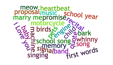 word cloud ideas for recording a sound for a Sound Shadow