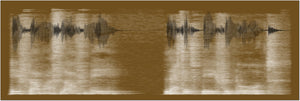 sound shadow voice and sound art in brown and ivory