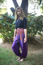 Load image into Gallery viewer, Peacock 35 women harem pants in Purple PP0004 020035 02