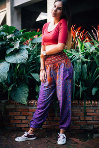 Peacock 35 women harem pants in Purple PP0004 020035 02