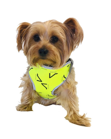 Ranilopa Canine Harness (4 colors available)