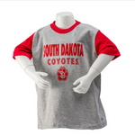 Boys Tee with Contrast Sleeve Colors