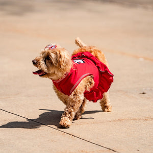 Red Pet Cheer Dress
