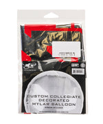 Silver SD Mylar Balloon