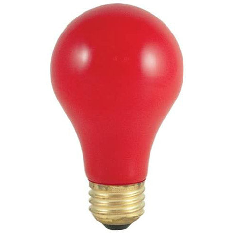 Red Light Bulbs - 2 Pack