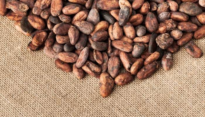 FEVES CACAO