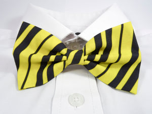 Black and Yellow Striped Pre-Tied Bow Tie. A bow tie featuring diagonal stripes in black and yellow.