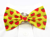 Strawberries Pre-Tied Bow Tie (DISCONTINUED)