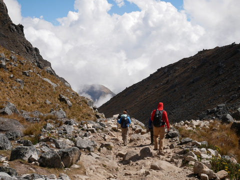 The Root Republic Team on the Salkantay Trek