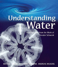 Understanding Water Developments from the Work of Theodor Schwenk  by Michael Jacobi , Wolfram Schwenk and Andreas Wilkens