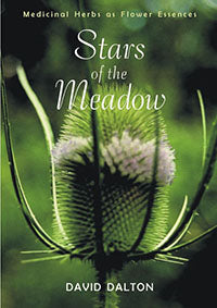 Stars of the Meadow: Medicinal Herbs As Flower Essences by David Dalton