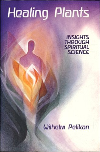 Healing Plants: Insights Through Spiritual Science by Wilhelm Pelikan