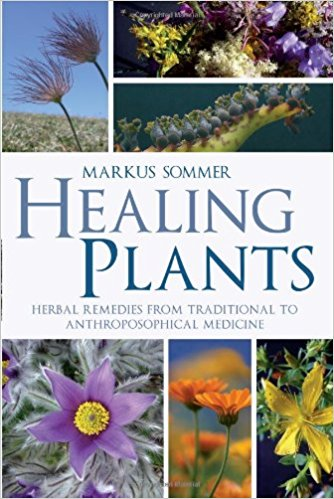 Healing Plants: Herbal Remedies from Traditional to Anthroposophical Medicine by Markus Sommer