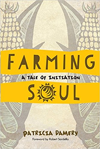 Farming Soul: A Tale of Initiation by Patricia Damery