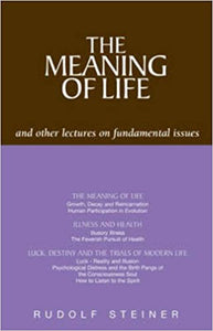 The Meaning of Life: And Other Lectures on Fundamental Issues by Rudolf Steiner