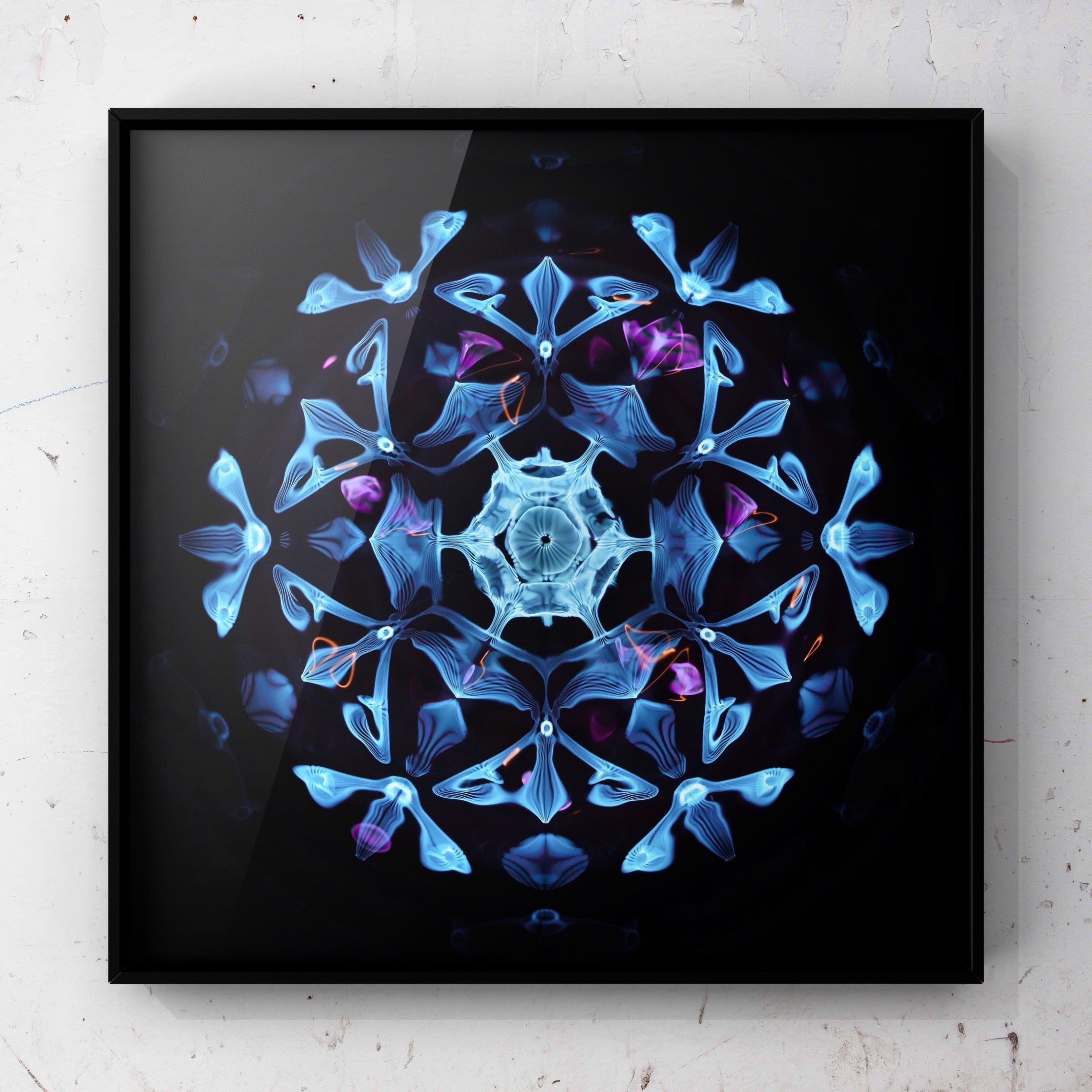 cymatics photography print sound made visible