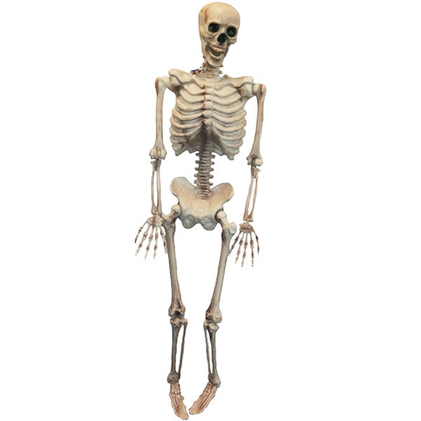 "60"" Hanging Skeleton - Buy Online Only"