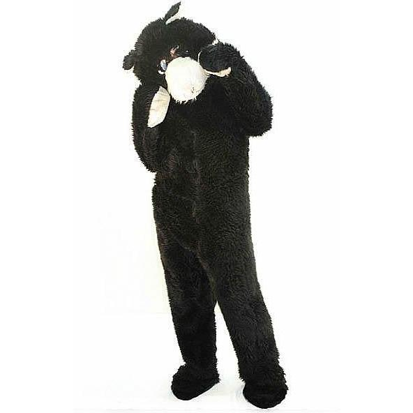 Cat Costume - Hire - The Costume Company | Fancy Dress Costumes Hire and Purchase Brisbane and Australia