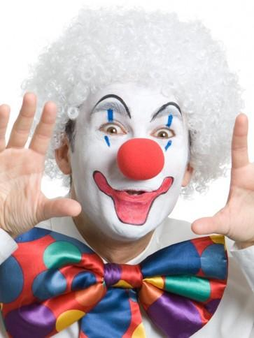 Clown Wig White - The Costume Company | Fancy Dress Costumes Hire and Purchase Brisbane and Australia