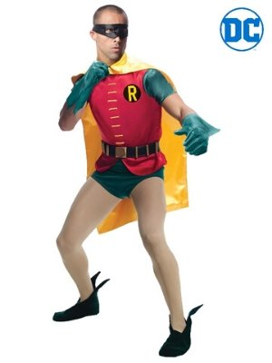 Robin 1966 Collectors Edition Costume - Buy Online Only - The Costume Company | Australian & Family Owned