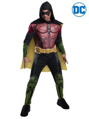 Robin Costume - Buy Online Only - The Costume Company | Australian & Family Owned