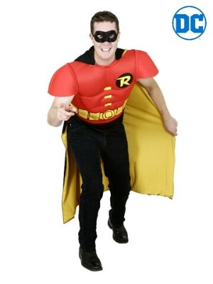 Robin TV Costume - Buy Online Only - The Costume Company | Australian & Family Owned