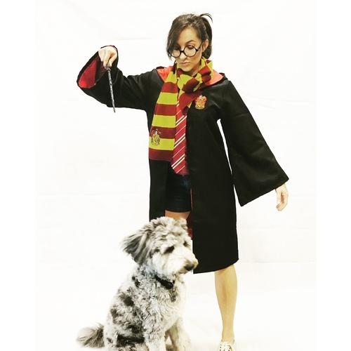 Wizard Accessory Set - The Costume Company | Fancy Dress Costumes Hire and Purchase Brisbane and Australia
