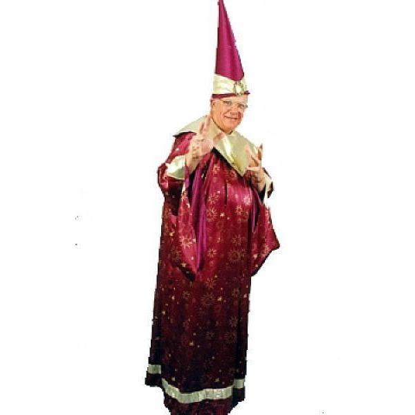Wizard Costume - Hire - The Costume Company | Fancy Dress Costumes Hire and Purchase Brisbane and Australia