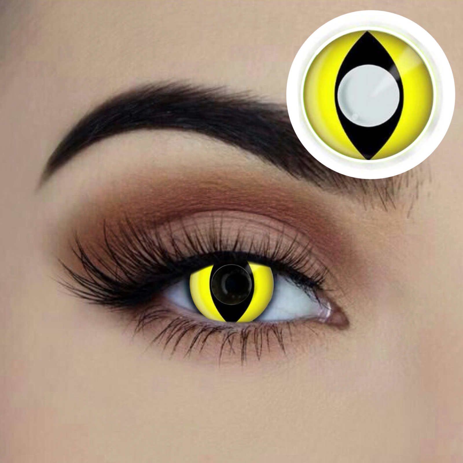 Yellow Cat 1 Year Contact Lenses