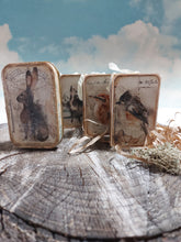 Altered Tins ~ Signature Woodlands
