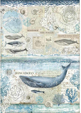 Stamperia Rice Paper for Decoupage A3 - Arctic Antarctic - History Of The Whale