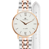 Iconic Gift Set | ROSE GOLD / SILVER / 36MM | REF: RGSI1062024G | Metal & leather straps