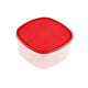 Greenfield Collection Square Red Storage Container