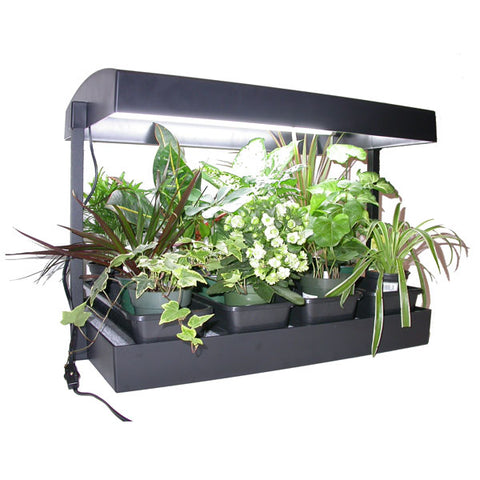 Sunblaster Grow Light Garden – Black