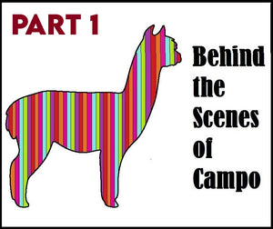 Behind the Scenes of Campo Part 1: Products