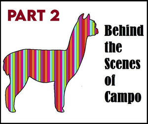 Behind the Scenes of Campo Part 2: Operations