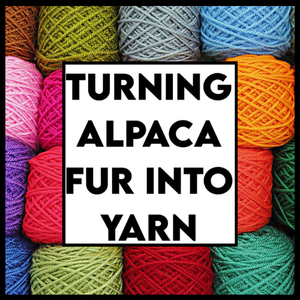 Turning Alpaca Fur into Yarn