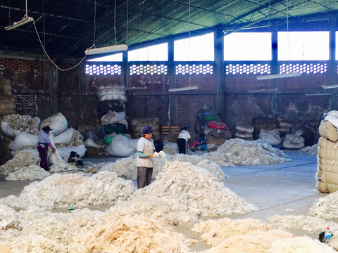 sorting, alpaca, fur, factory