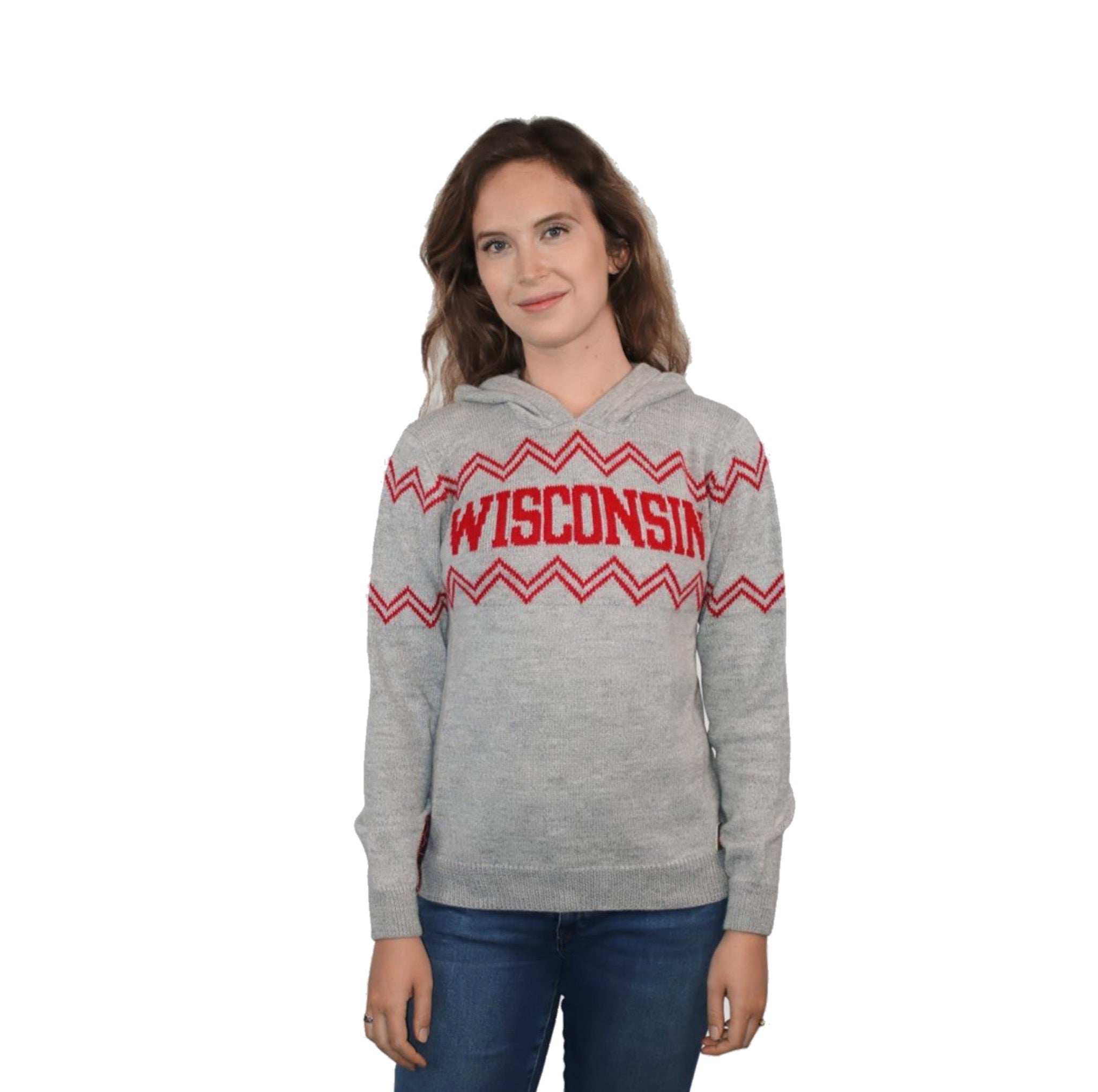 Wisconsin Alpaca Hoodie - Light Gray