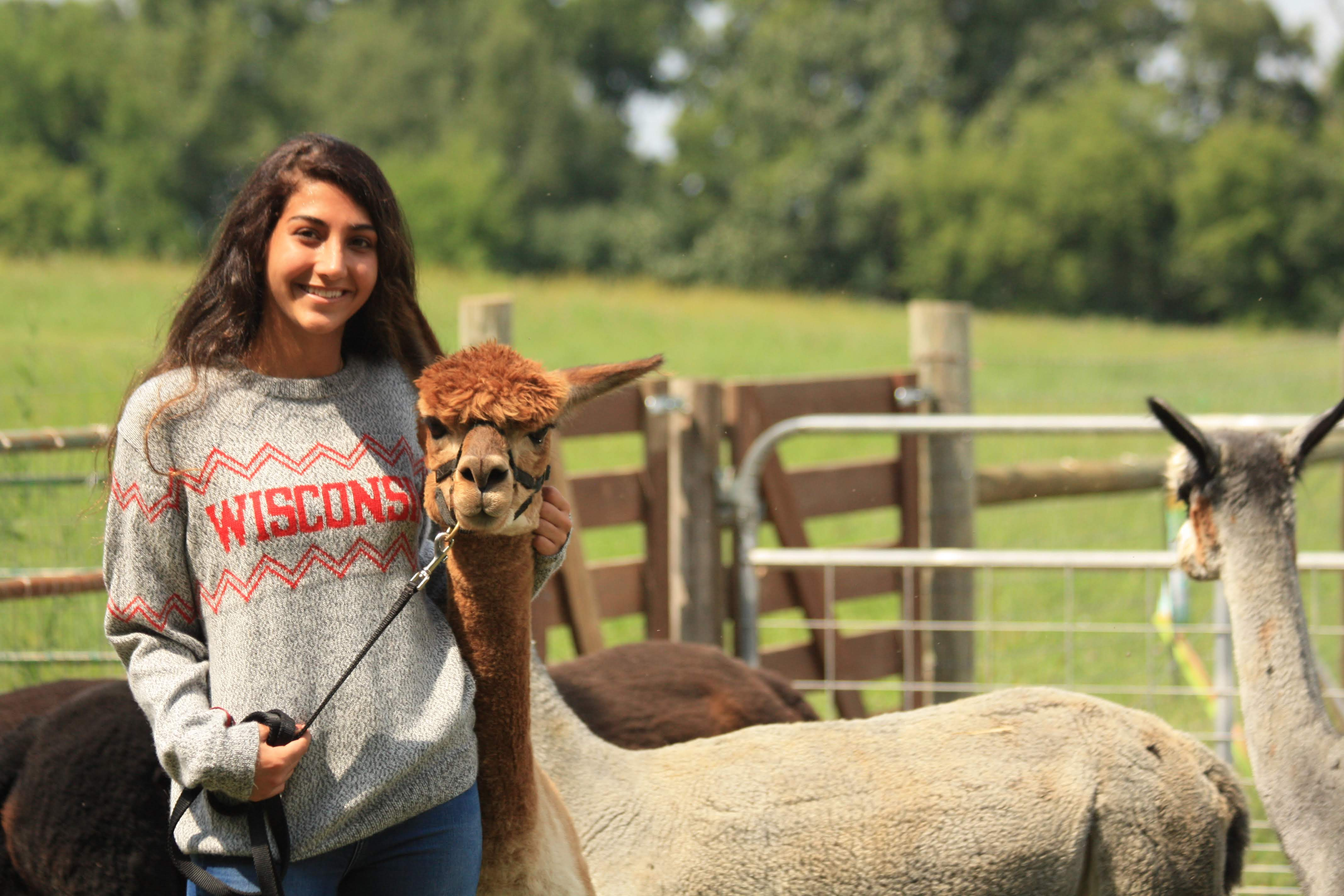 Girl in Salt and Paper Wisconsin Crew Neck with Alpaca