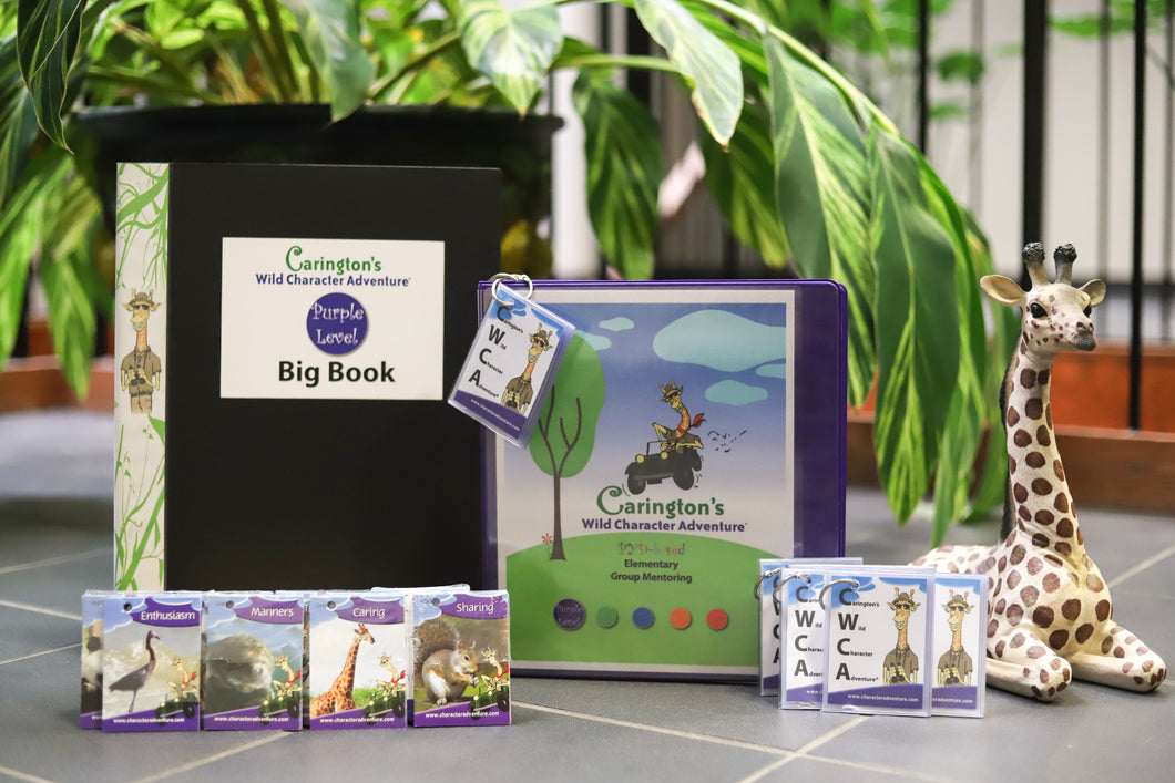Pre-K/Kindergarten - Purple Level Kit