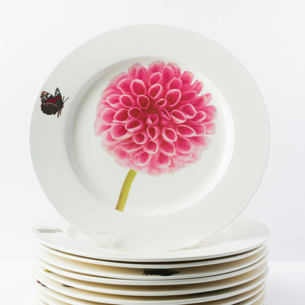 Set of 12 Handmade Dinner Plates w/ Dahlia 11.5""
