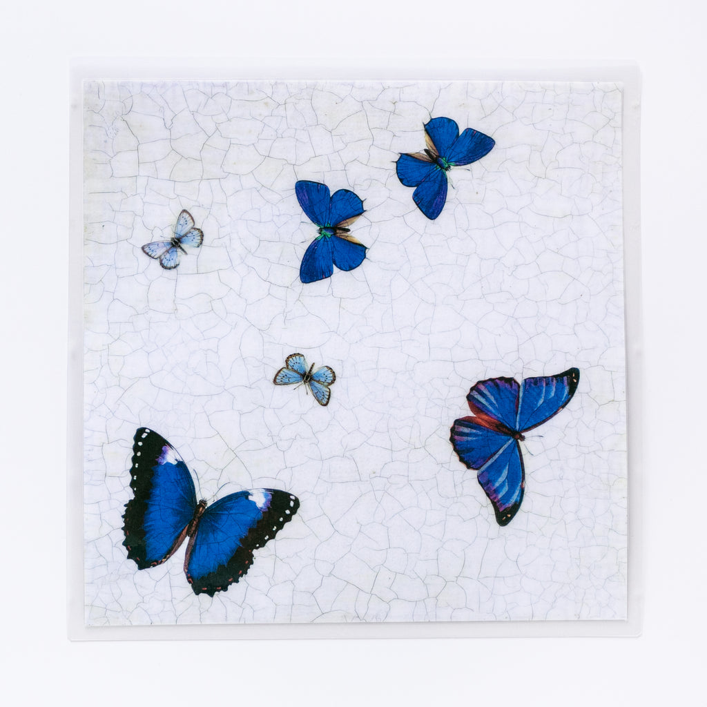 Butterfly Square Blue Mat