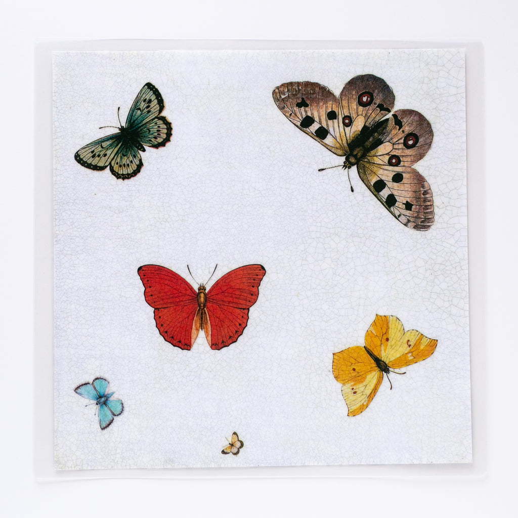 Butterfly Square Multi-Colored Mat