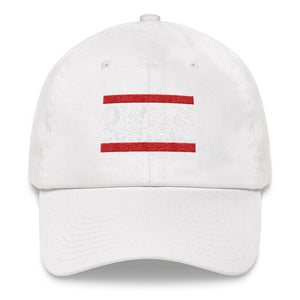 Own & Control Dad hat