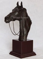 Thoroughbred Horse Bust in Cold Cast Bronze Handmade in the UK